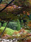 Nächster Besuch im Japanischen Garten