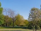 Berliner Tiergarten